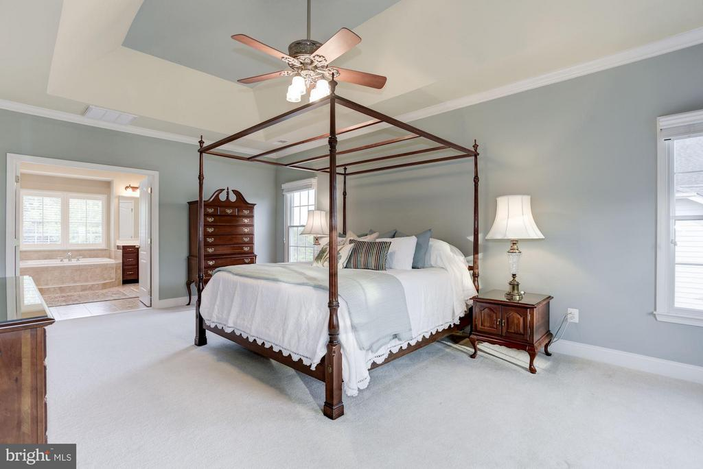 Bedroom (Master) - 20234 KENTUCKY OAKS CT, ASHBURN