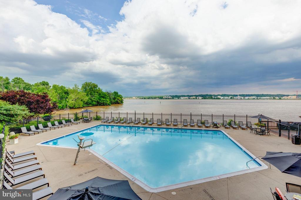 Lovely and scenic pool area - 501 SLATERS LN #1411, ALEXANDRIA