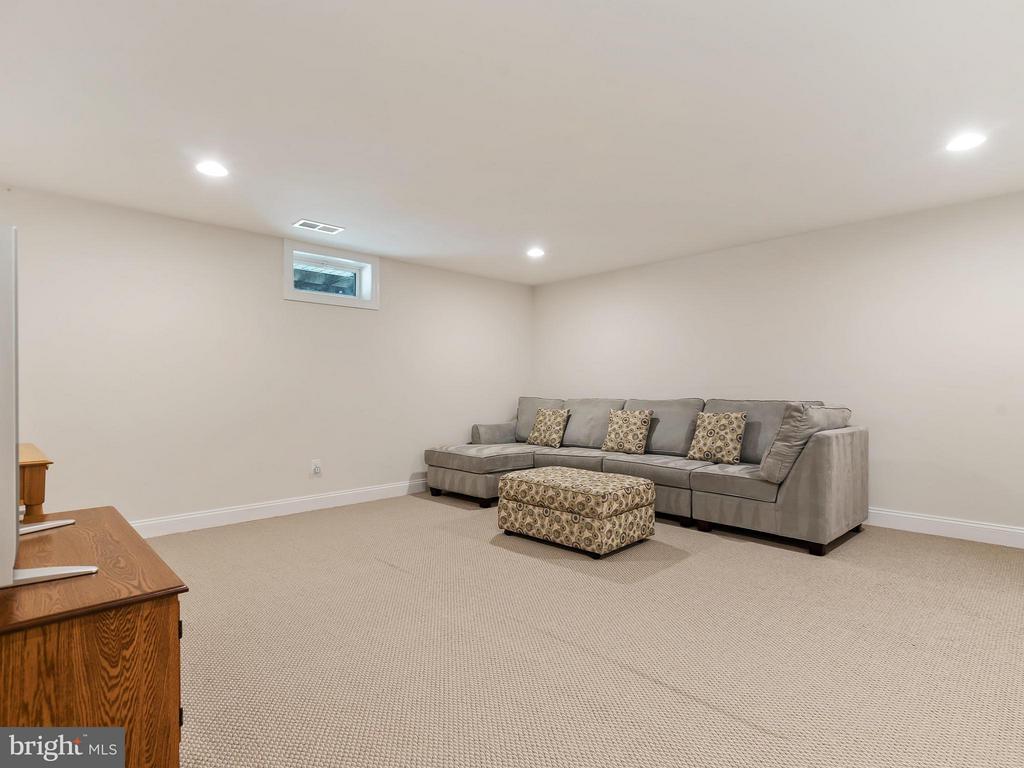 Basement Family Room - 24112 STATESBORO PL, ASHBURN