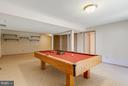 Recreation Room - 6005 BURNSIDE LANDING DR, BURKE