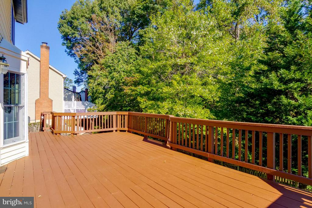 Large Deck for parties - 6005 BURNSIDE LANDING DR, BURKE