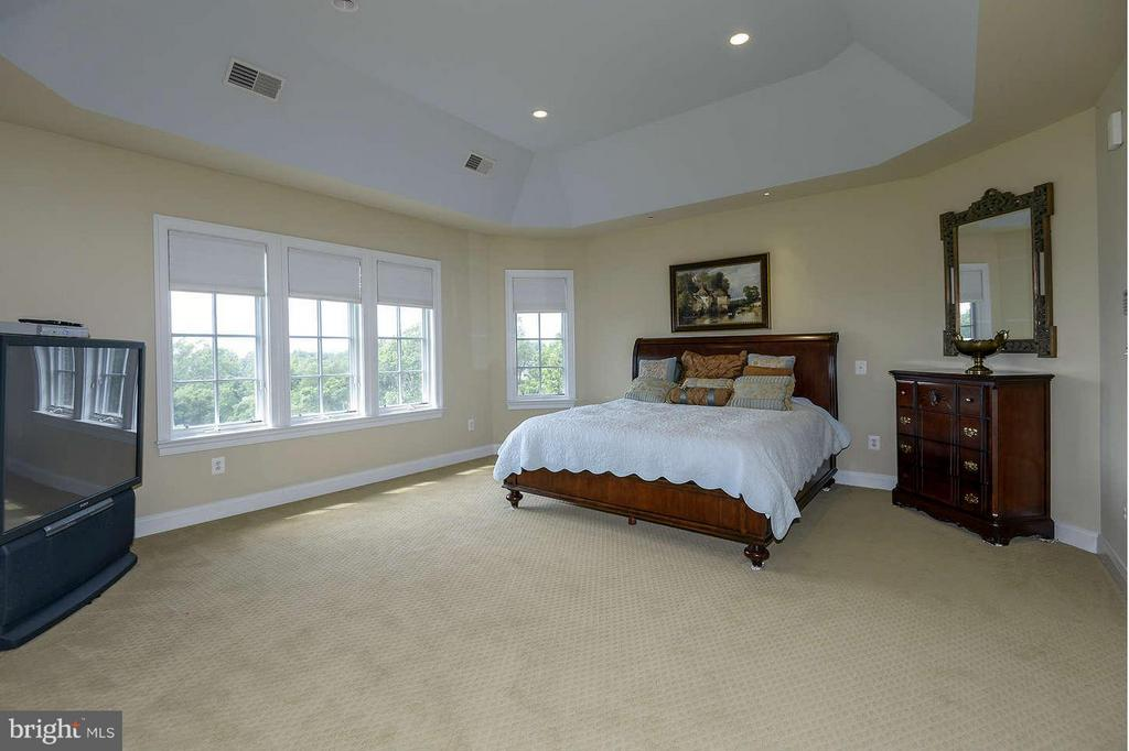 Large Master with stunning views off terrace - 21051 ST LOUIS RD, MIDDLEBURG