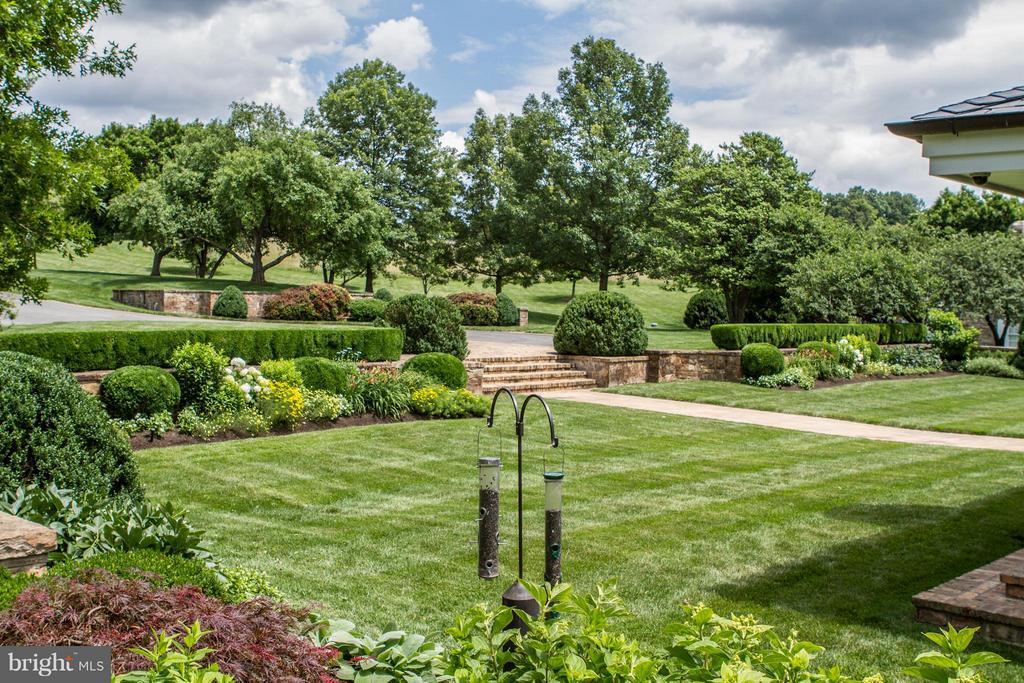 Front garden - 2550 LANDMARK SCHOOL RD, THE PLAINS