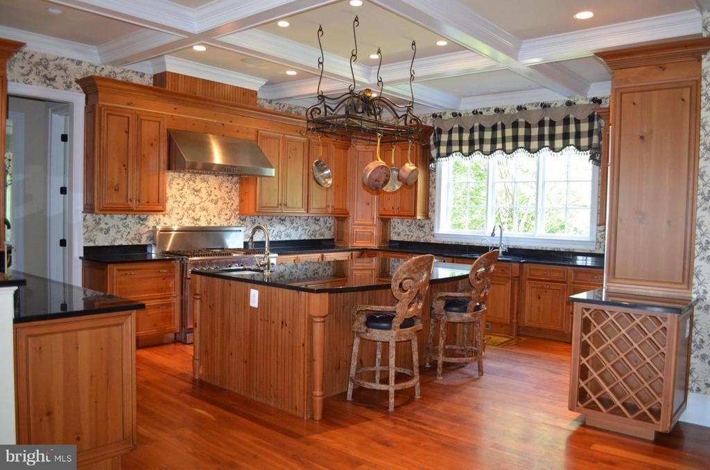 Large kitchen with gourmet appliances - 21051 ST LOUIS RD, MIDDLEBURG