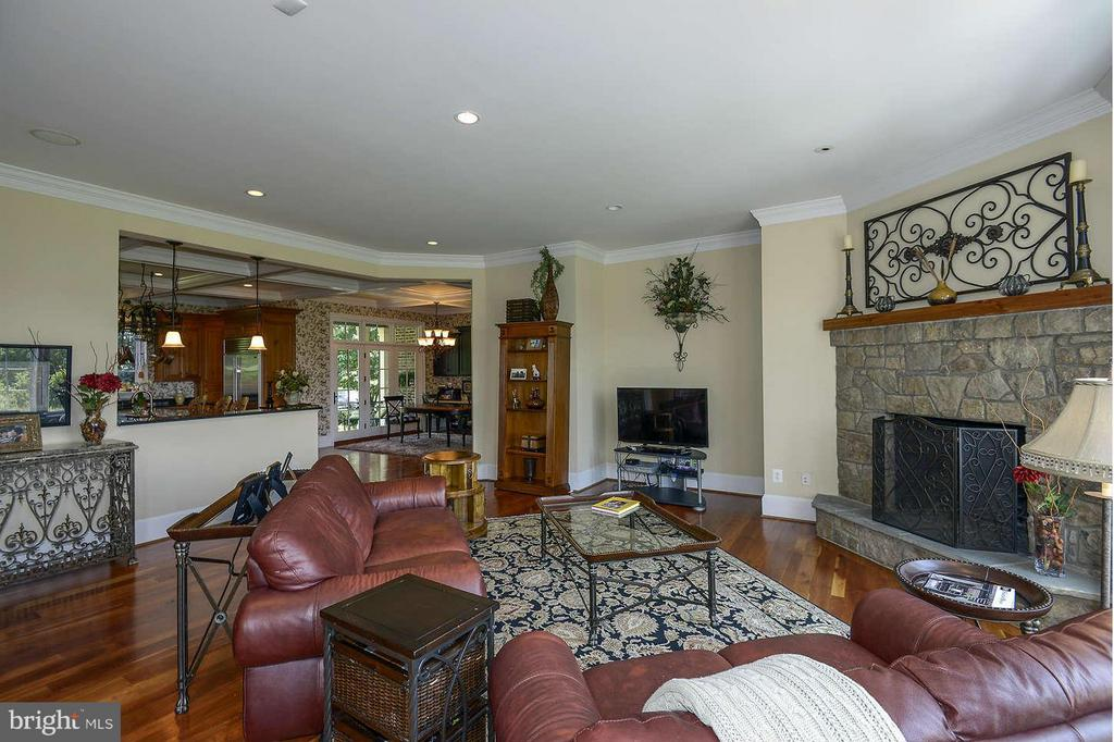 Family Room with stone fireplace - 21051 ST LOUIS RD, MIDDLEBURG
