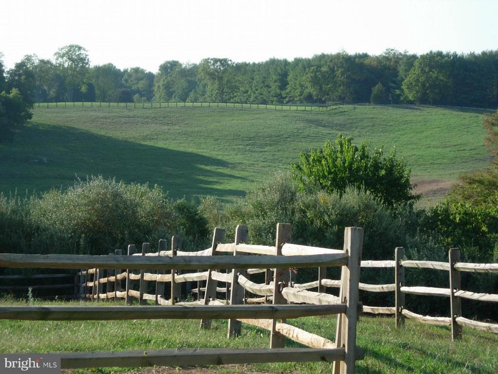 View - 644 LIME MARL LN, BOYCE