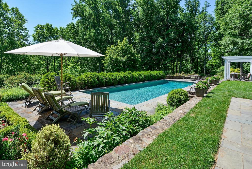 Pool - 35571 MILLVILLE RD, MIDDLEBURG