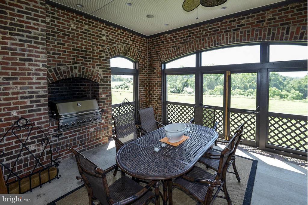 Screened porch with fireplace and grill - 21051 ST LOUIS RD, MIDDLEBURG