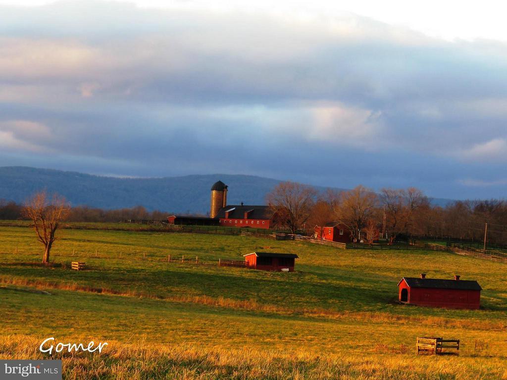 9024  QUADRANGLE ROAD, Fauquier County, Virginia
