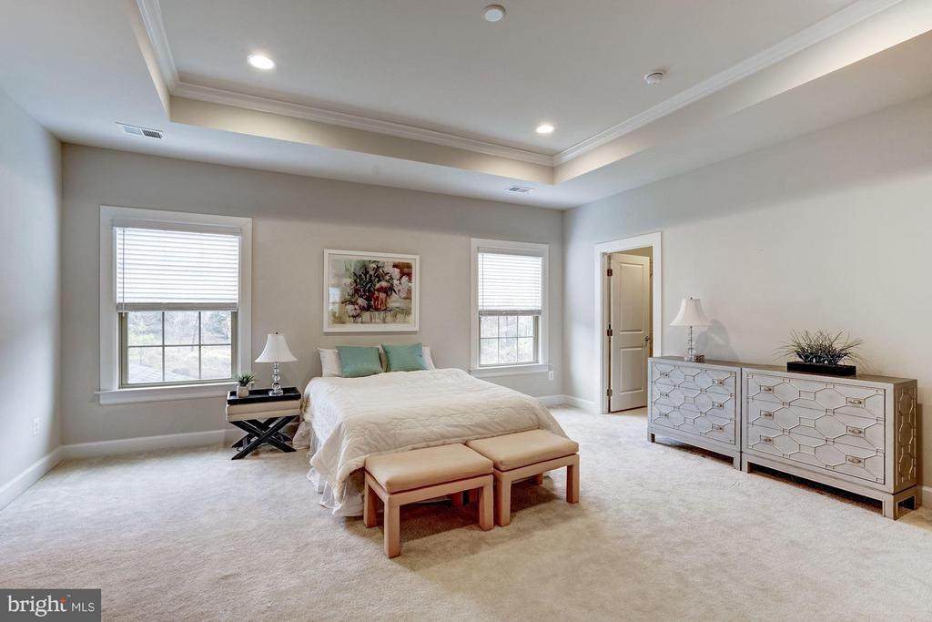 Gorgeous Master with Ensuite, his/her closets - 11463 CRANEBILL ST, FAIRFAX