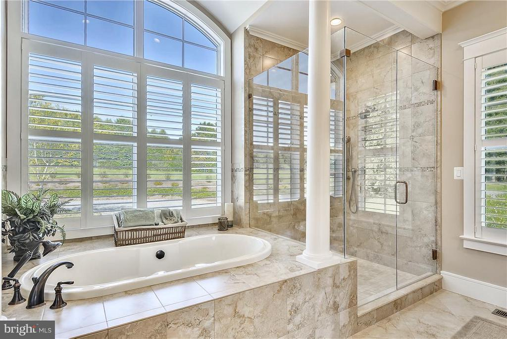 Bath (Master) - 20271 GILESWOOD FARM LN, PURCELLVILLE