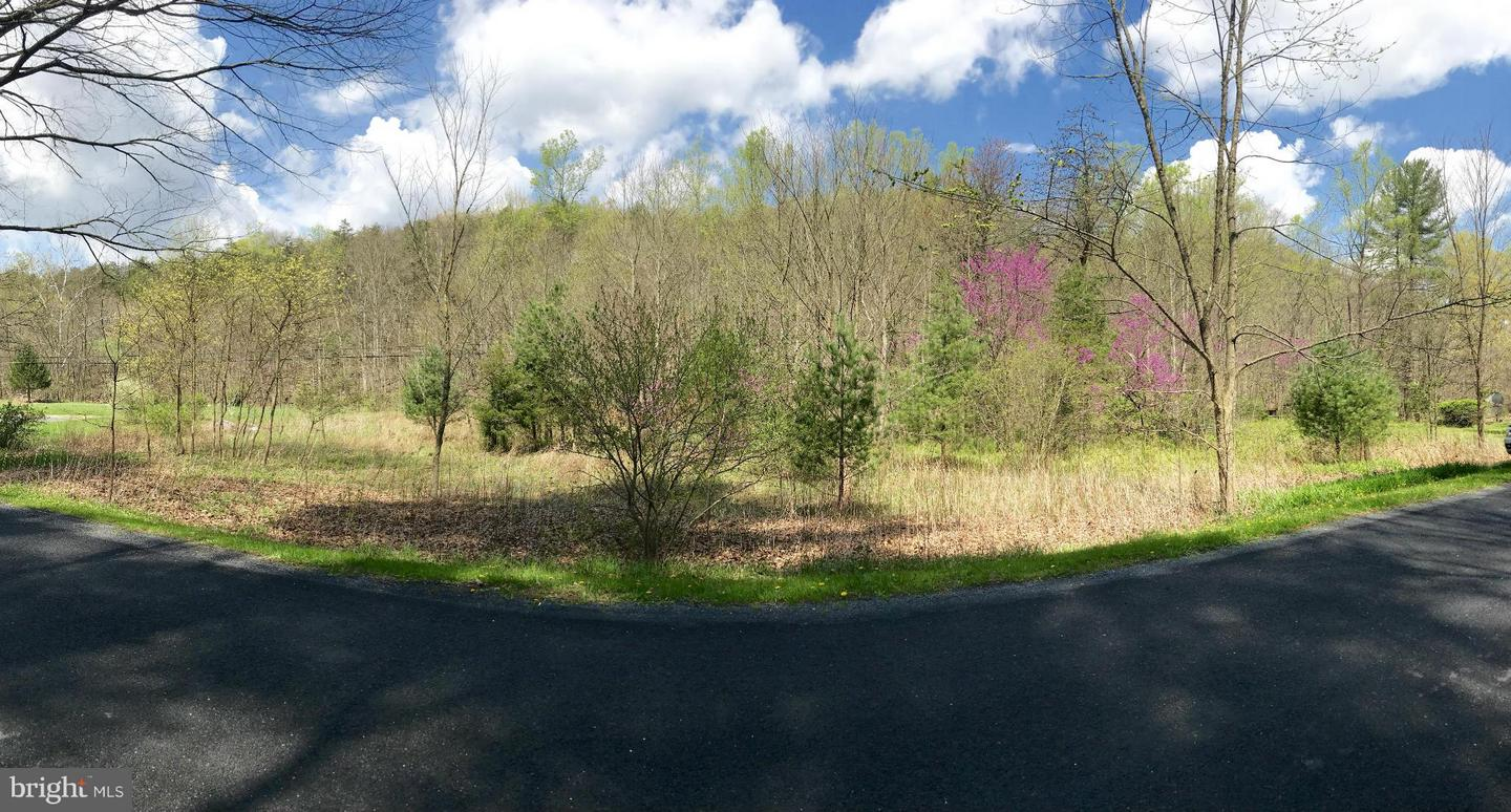 Land for Sale at Not On File Gore, Virginia 22637 United States