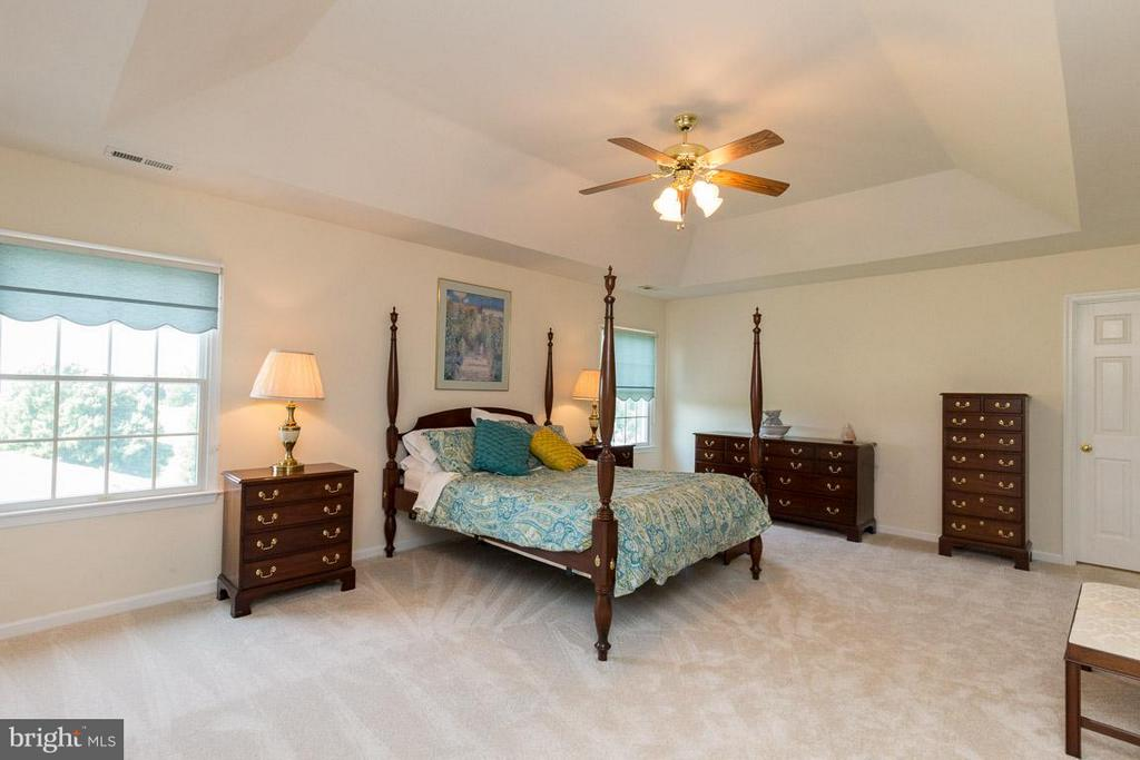 Master Bedroom- Alt View - 42355 GREEN MEADOW LN, LEESBURG