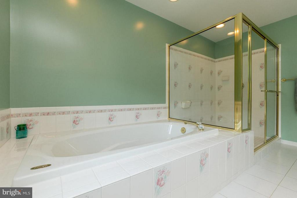 Master Bathroom - 42355 GREEN MEADOW LN, LEESBURG