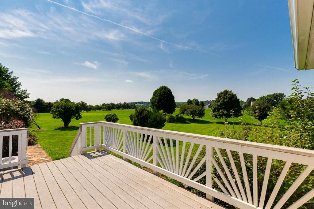 Deck Overlooking Private Tree Lined Rear Yard - 42355 GREEN MEADOW LN, LEESBURG