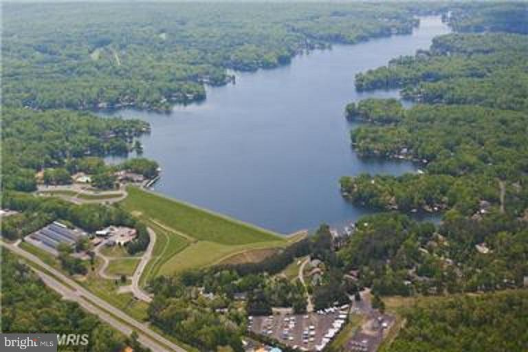 Aerial of the Lake - 131 MADISON CIR, LOCUST GROVE