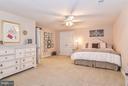 Lower Level Au Pair Suite with Walk in Closet - 1309 STAMFORD WAY, RESTON