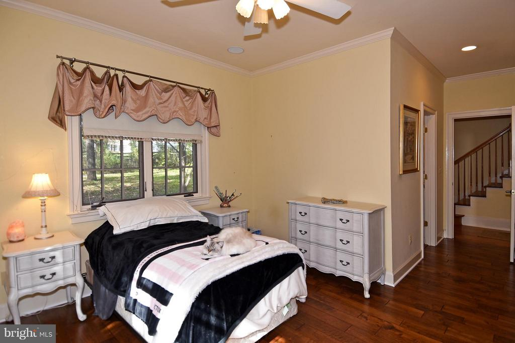 2nd Bedroom on Main level - 23590 SALLY MILL RD, MIDDLEBURG
