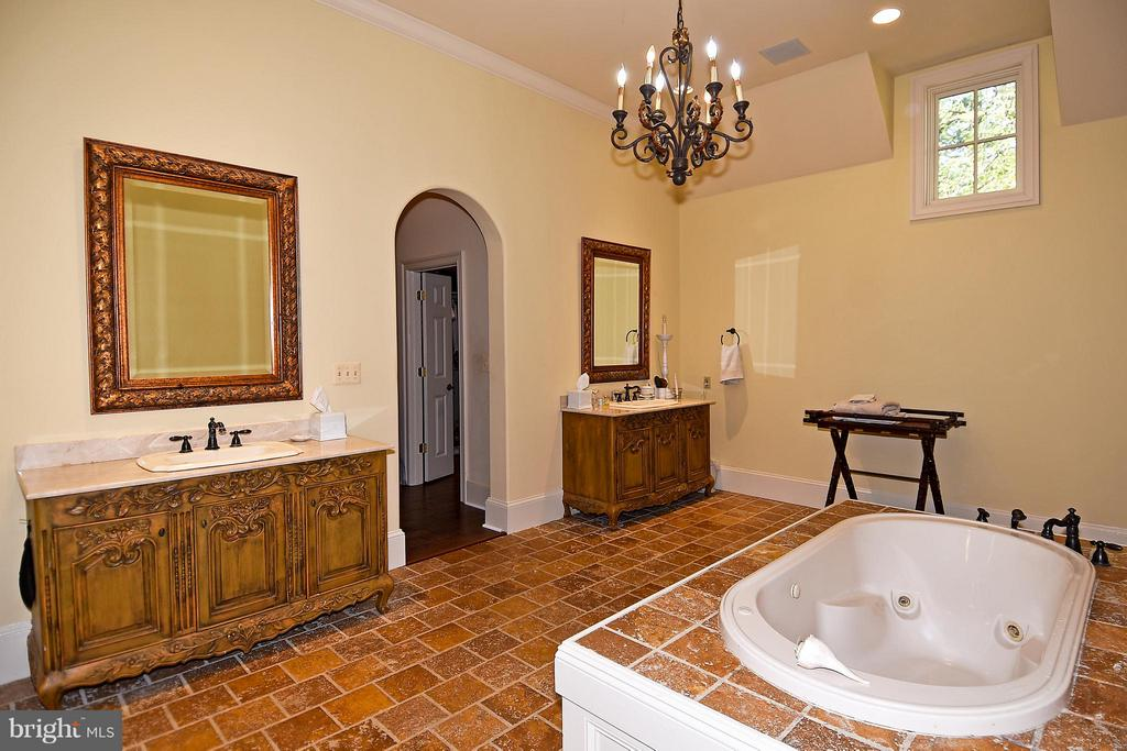 Bath (Master) with shower and tub - 23590 SALLY MILL RD, MIDDLEBURG