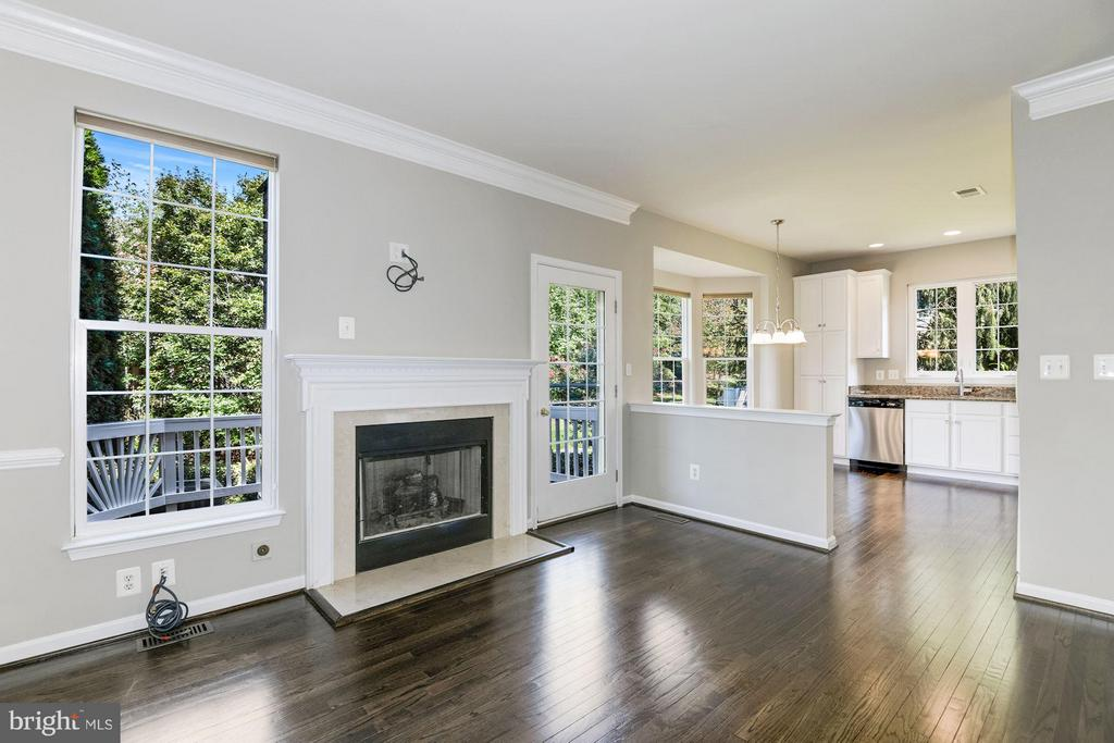 Family Room  w / Fireplace Walks Out to the Deck - 43616 DUNHILL CUP SQ, ASHBURN