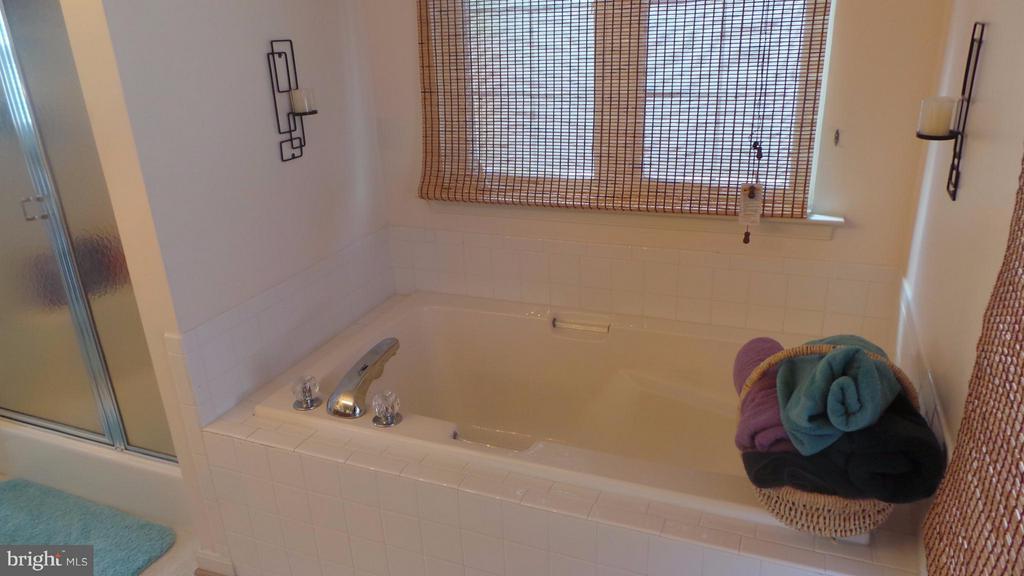 Bath (Master) - 6917 HAWTHORNE WOODS CIR, FREDERICKSBURG