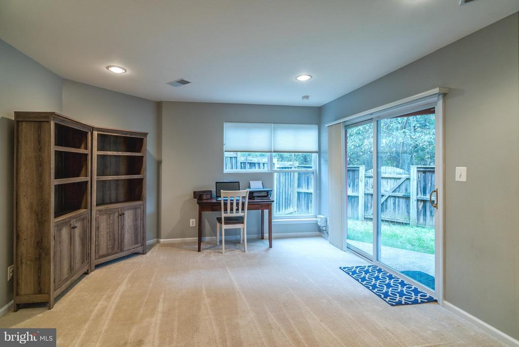 Rec Room with Walk-out - 21436 FALLING ROCK TER, ASHBURN