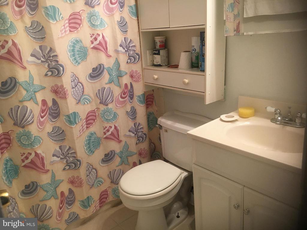 Bath (Master) - 3007 SIGEL CT, DUMFRIES