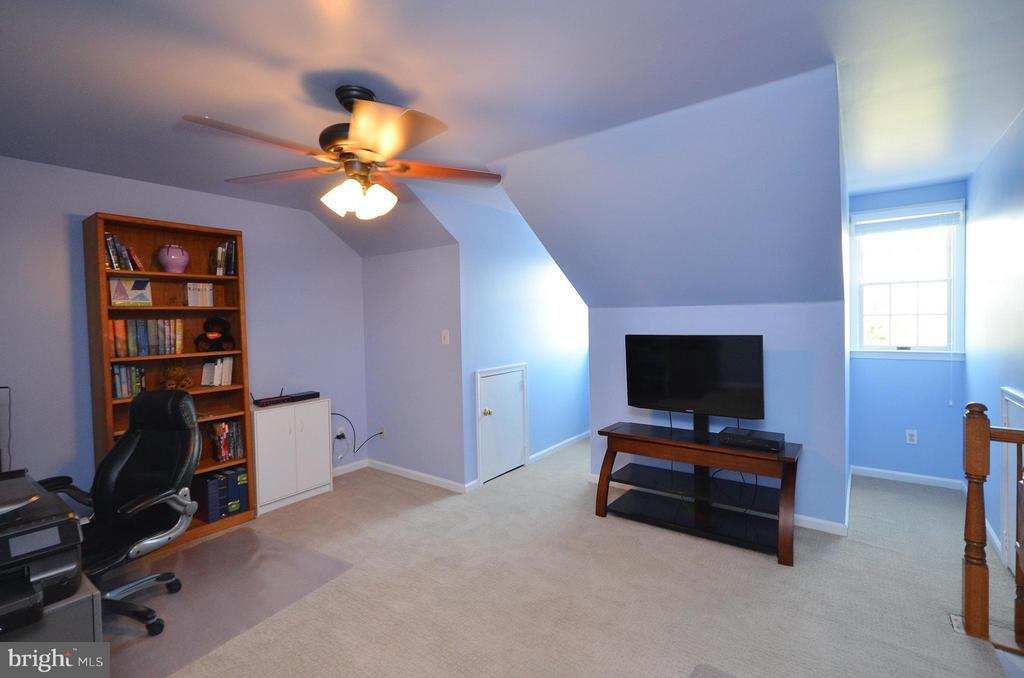 3rd Bedroom or Loft - 44067 LACEYVILLE TER, ASHBURN