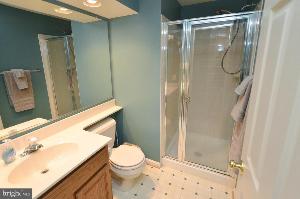 Basement Bathroom - 44067 LACEYVILLE TER, ASHBURN