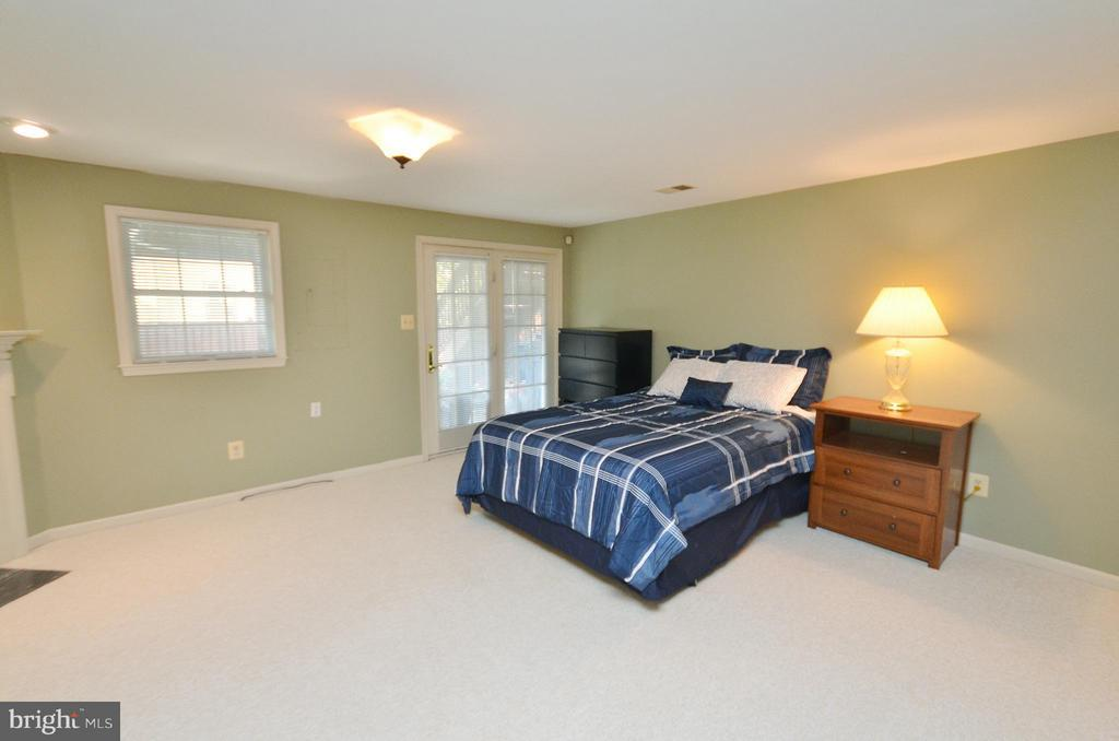 Walkout Level Rec Room - 44067 LACEYVILLE TER, ASHBURN
