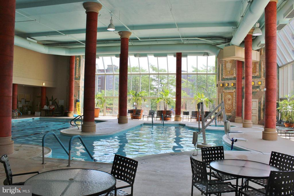 Swim laps or float along, jacuzzi, locker room. - 19370 MAGNOLIA GROVE SQ #108, LEESBURG