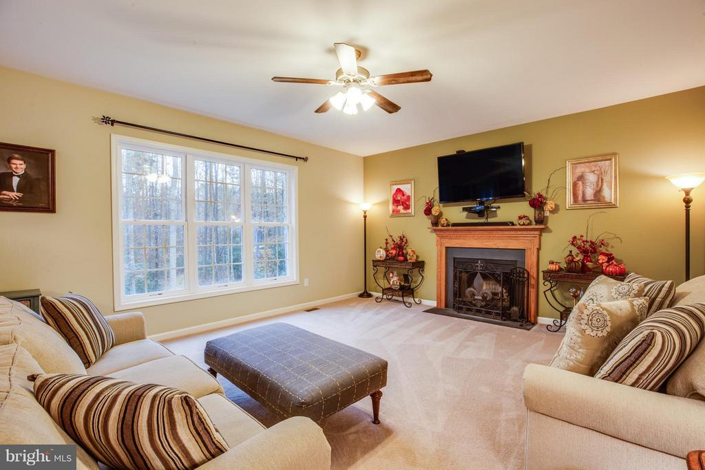 Relax by the fireplace in the family room - 2521 REGENCY DR, FREDERICKSBURG
