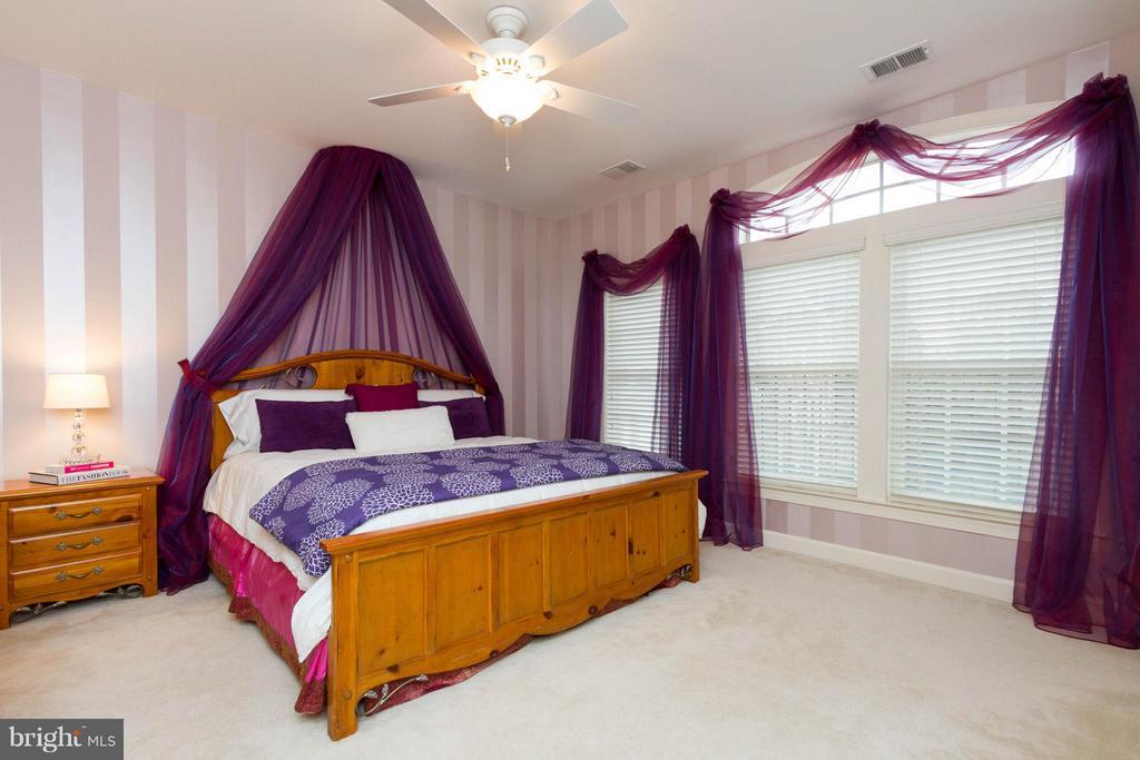 Bedroom 3 has custom paint and a walk-in closet. - 18332 BUCCANEER TER, LEESBURG