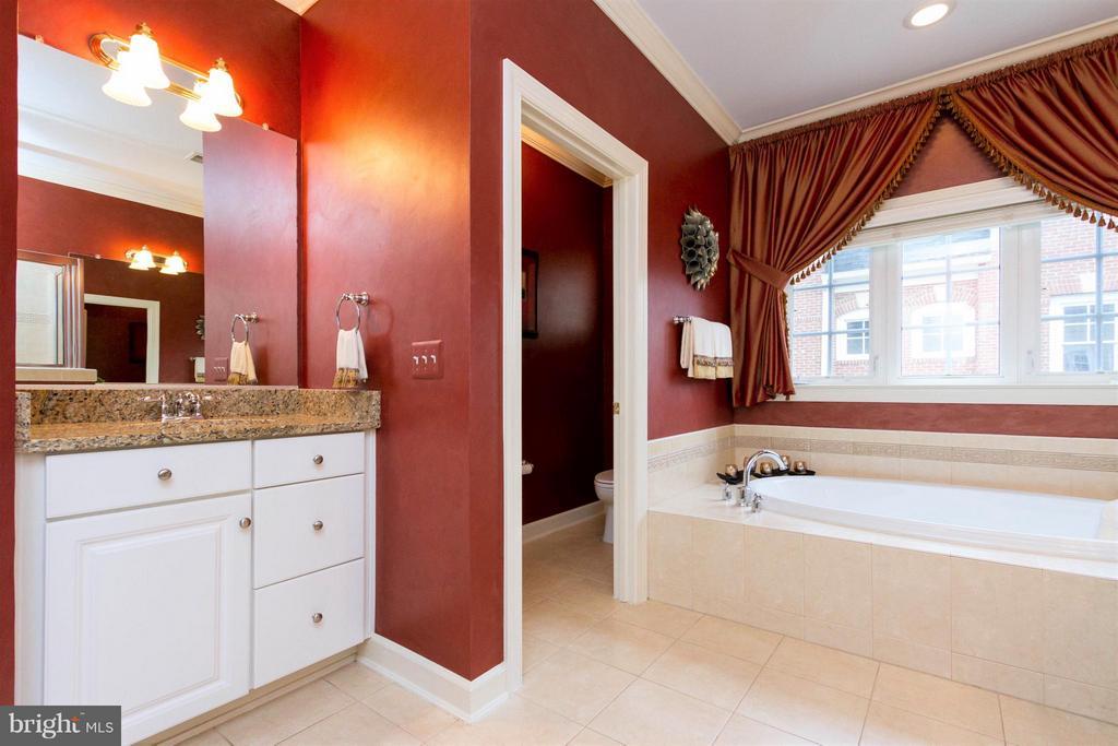 Master spa bathroom to rejuvenate your spirit! - 18332 BUCCANEER TER, LEESBURG