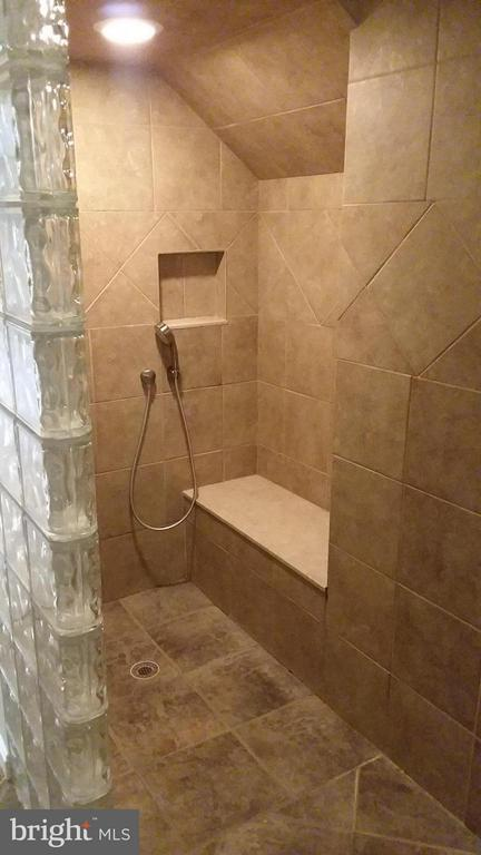 Shower in basement full bath - 13110 CEDAR RIDGE DR, CLIFTON