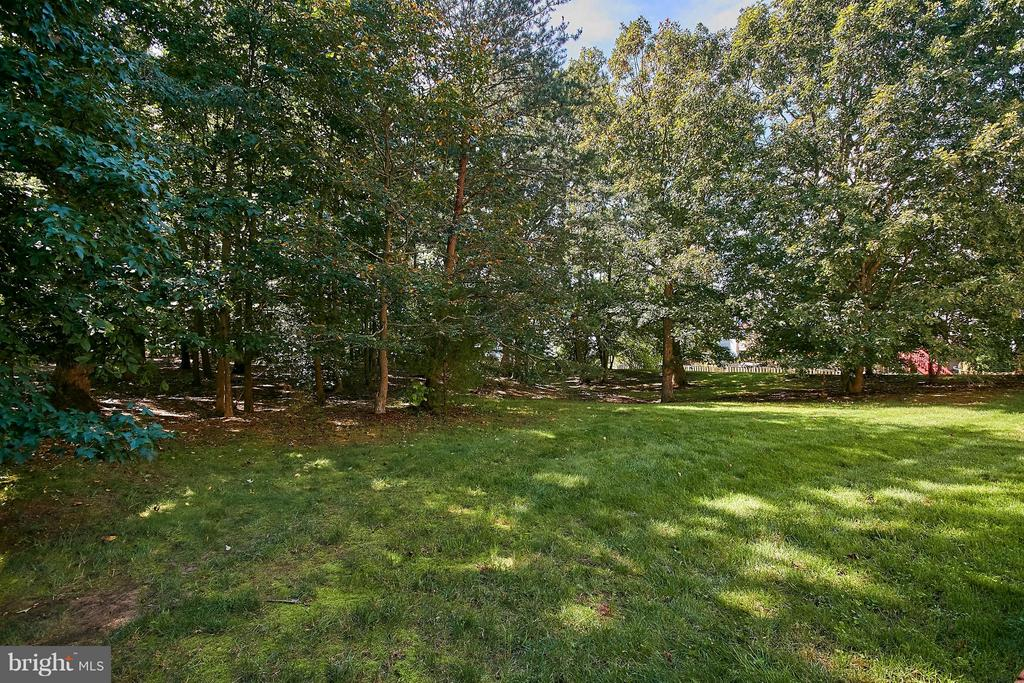 Lawn and Tree View - 6515 MILLER DR, ALEXANDRIA