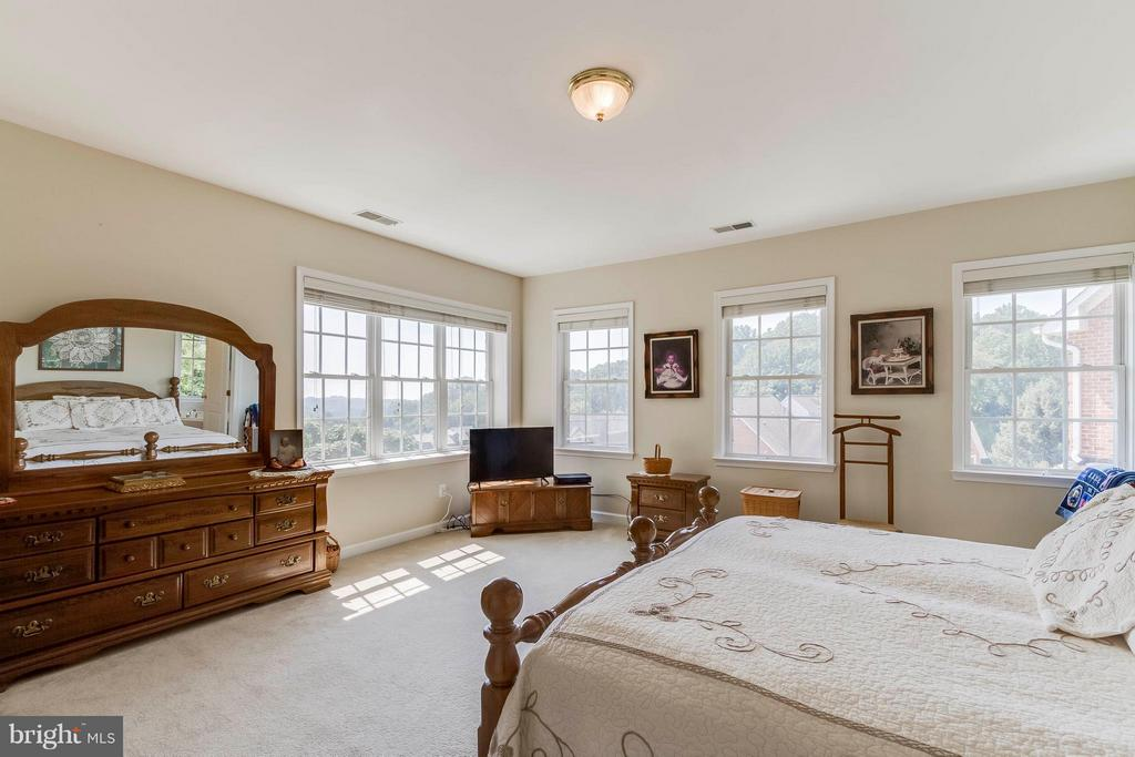 Spacious Master Bedroom - 382 MYRTLE PL, OCCOQUAN