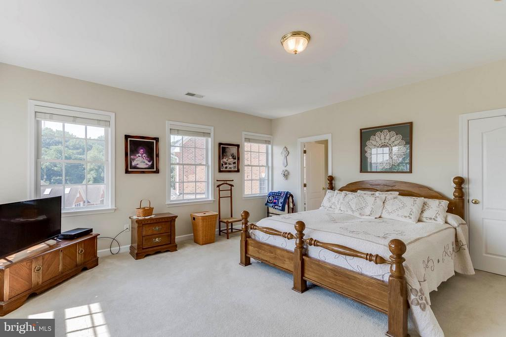 Lots Of Natural Light In The Master Bedroom - 382 MYRTLE PL, OCCOQUAN
