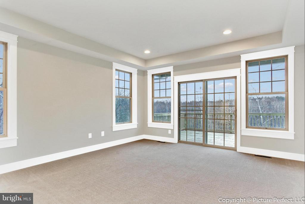 Master Bedroom w/ Tray Ceilings - THURSTON RD, DICKERSON