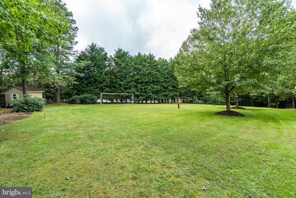 Manicured leveled yard, beautiful ornamental trees - 8615 LEE JACKSON CIR, SPOTSYLVANIA