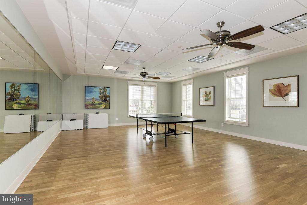 Community Rec Room - 21007 ROCKY KNOLL SQ #103, ASHBURN