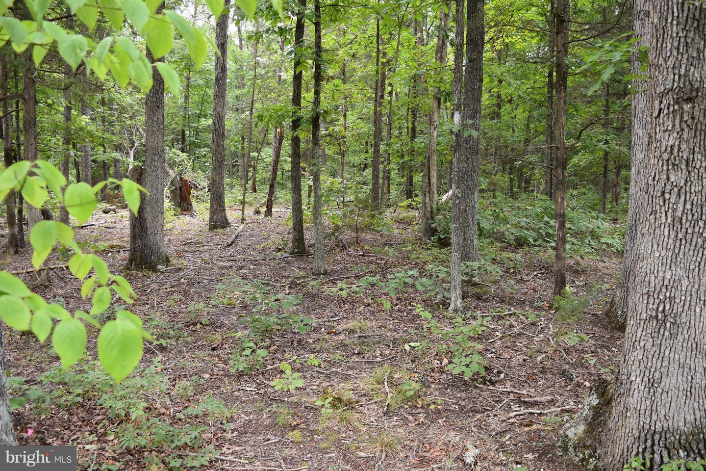 Land for Sale at Lot 14 Reliance Woods Dr Middletown, Virginia 22645 United States