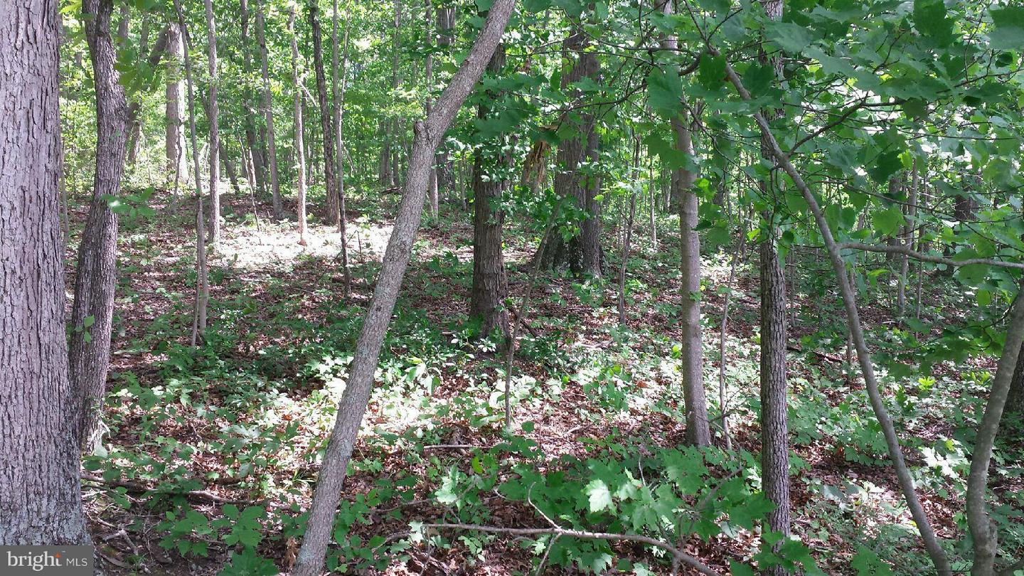 Land for Sale at Rock Ridge Rd Front Royal, Virginia 22630 United States