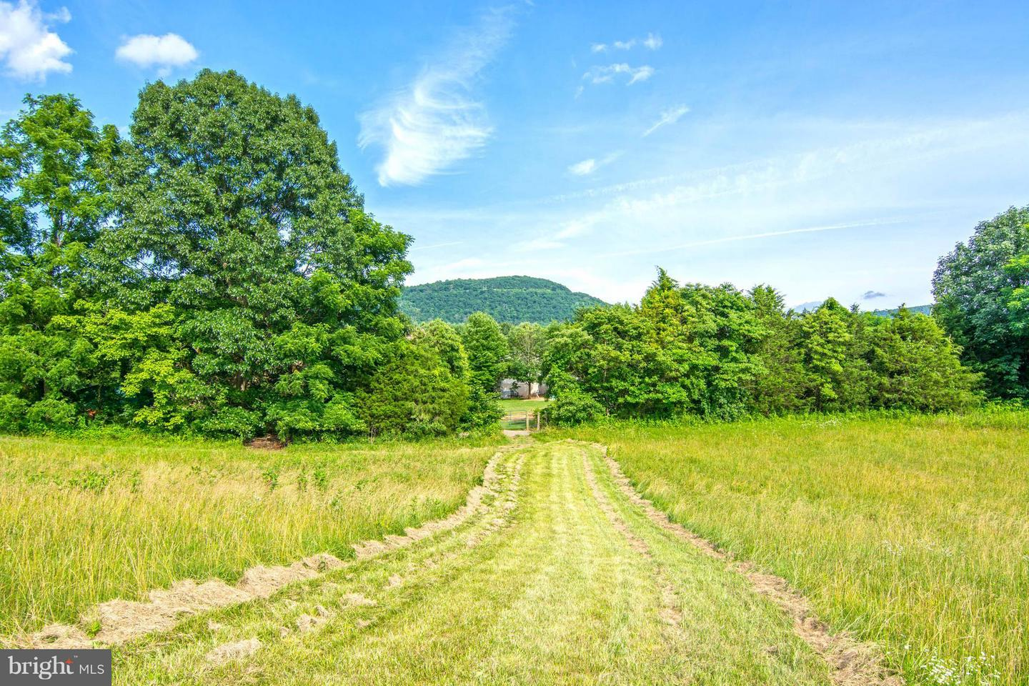 Additional photo for property listing at Lot 83 Rocky Ln Front Royal, Virginia 22630 United States