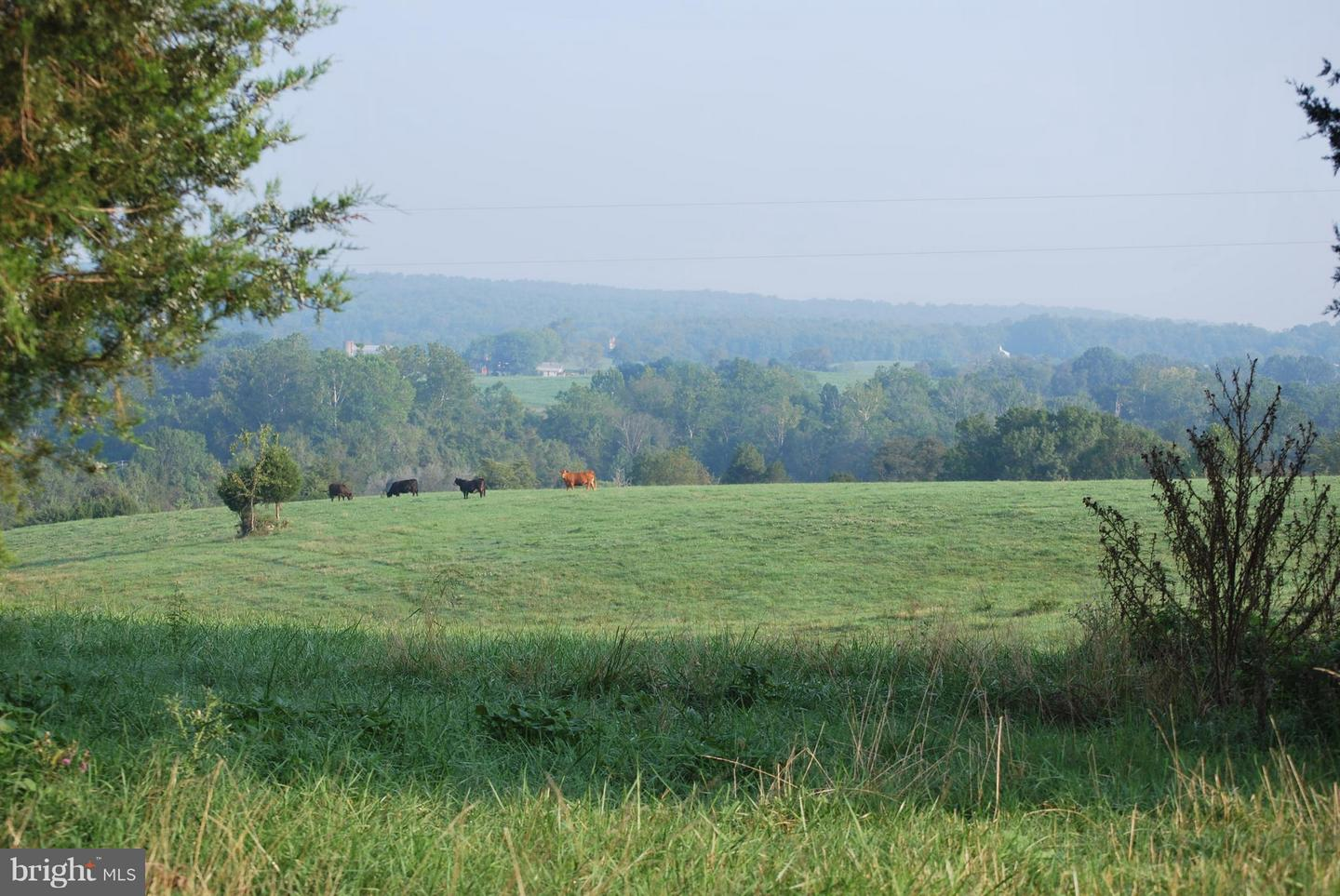 Land for Sale at 7281 Zachary Taylor Hwy Unionville, Virginia 22567 United States