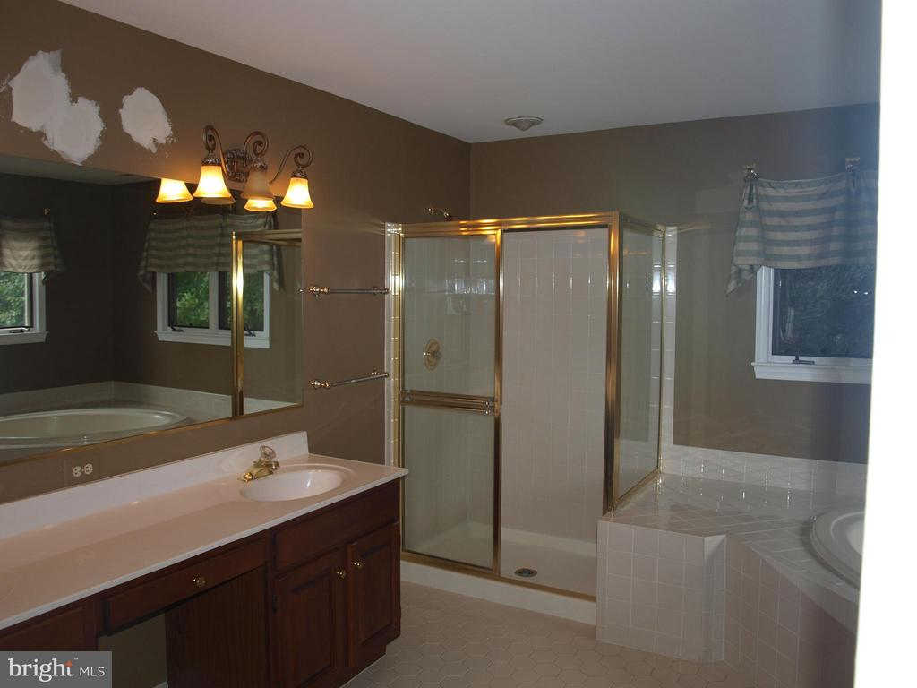 Large Soaking Tub - 47567 COLDSPRING PL, STERLING