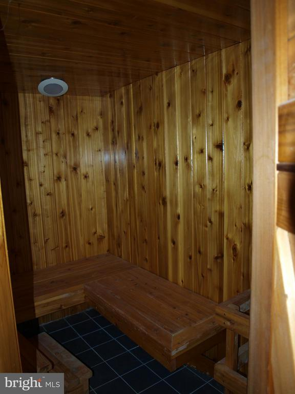 Your Own Sauna - 47567 COLDSPRING PL, STERLING