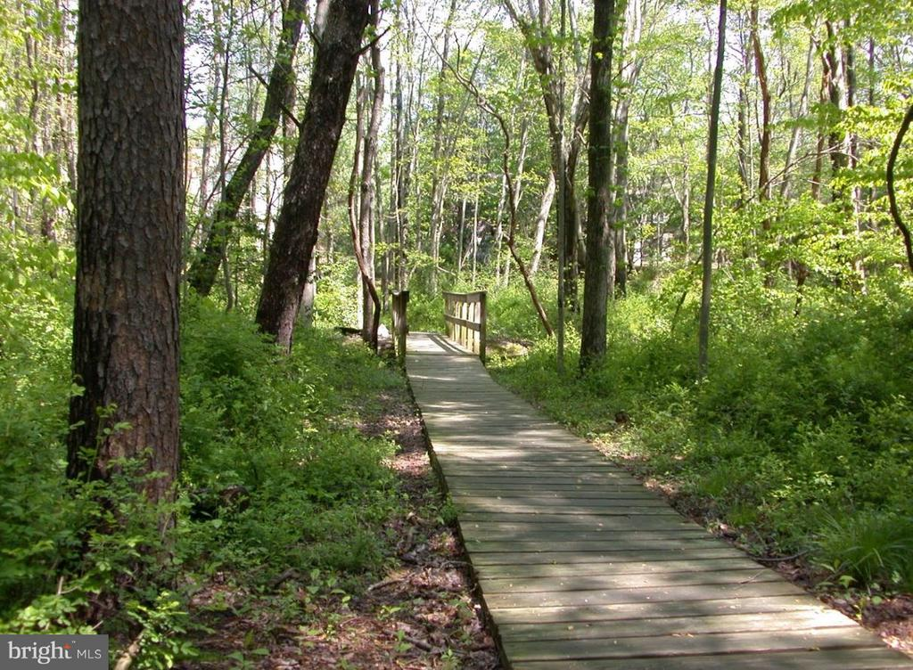 Burke Centre Walking/Jogging Paths - 6055 PARK WOODS TER, BURKE