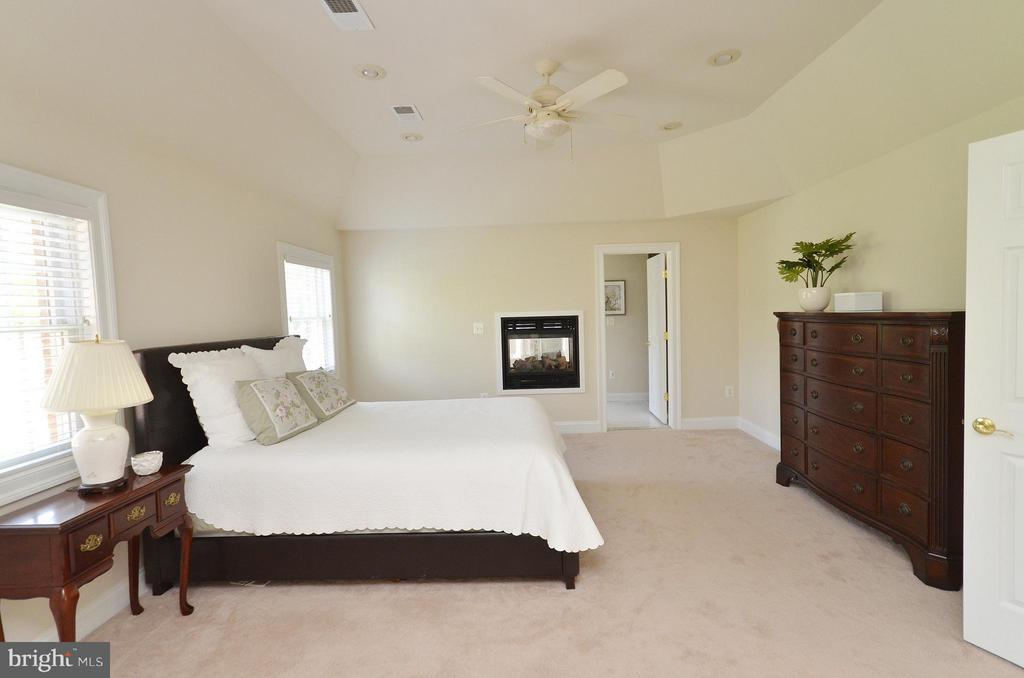 Bedroom (Master) with Gas Fireplace - 41155 TROTTER LN, PAEONIAN SPRINGS