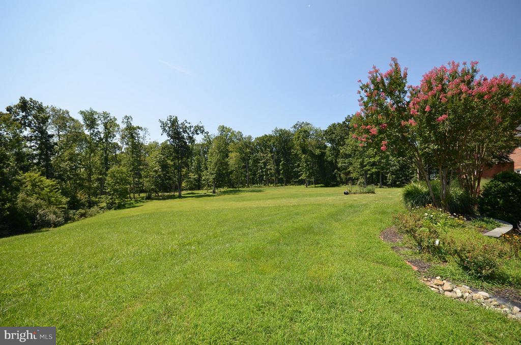 View from rear of home - 41155 TROTTER LN, PAEONIAN SPRINGS